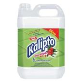 Desinfetante Bactericida 5L Eucalipto 1 UN Kalipto