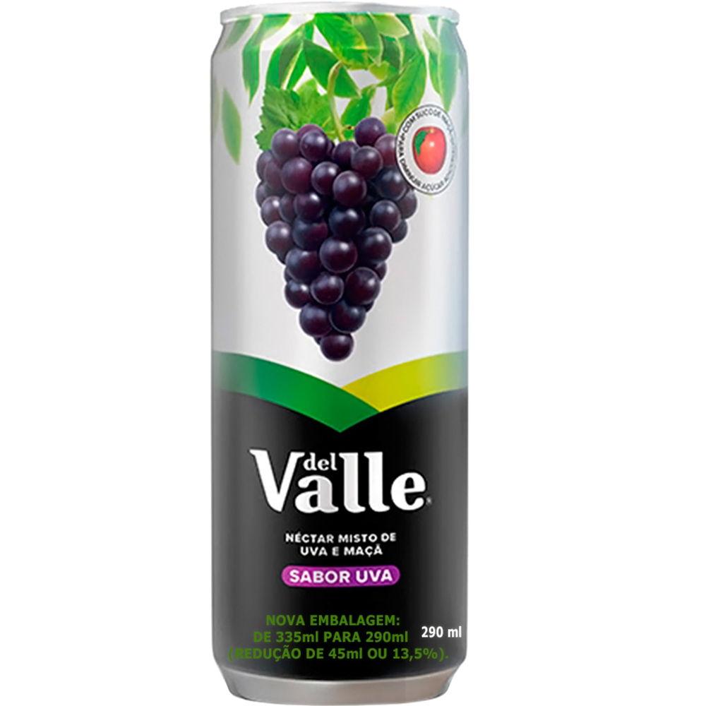Suco Néctar de Uva 290ml 1 UN Del Valle