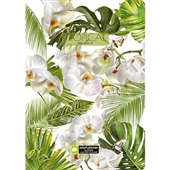 Smart Planner 18 Meses Tropical Vibe Natural Chies