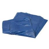 Saco de Lixo Econômico 60L Azul 53x70cm 0,004 PT 100 UN Poliplast