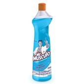 Limpa Vidros Squeeze 500ml 1 UN Mr. Músculo