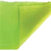 Pano de Chão Saco Alvejado 44x64cm Verde 1 UN Fortfio