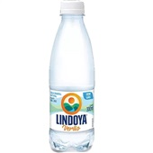 Água Mineral sem Gás Verão 300ml 1 UN Lindoya