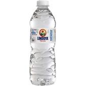 Água Mineral sem Gás Verão Sense 510ml 1 UN Lindoya