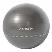 Bola de Ginástica Premium 65cm PVC Cinza ES215 1 UN Atrio